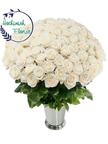 100 White Roses In A Vase