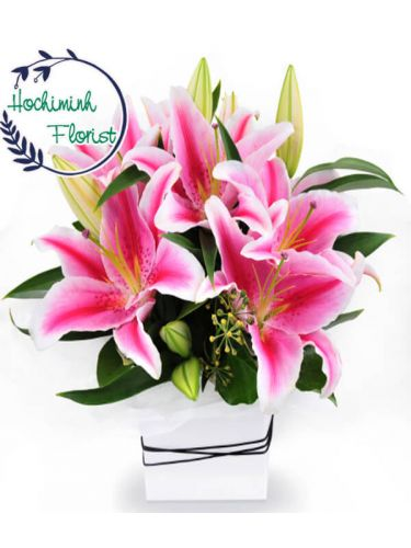 1 To 11 Pink Lilies In A Vase