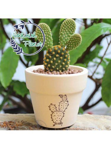 Cactus 2